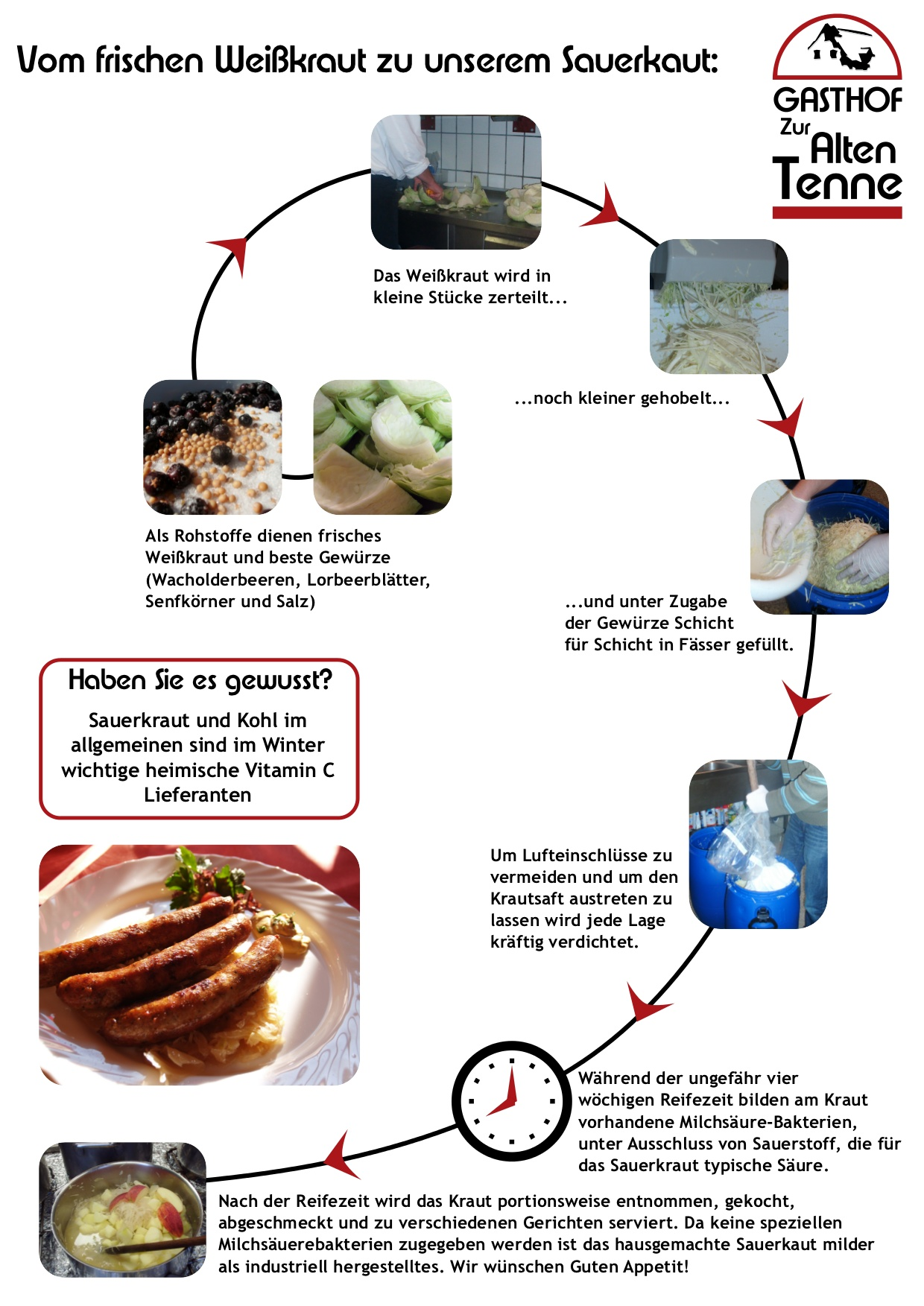 Vom frischen Weißkraut zu unsrem Sauerkraut