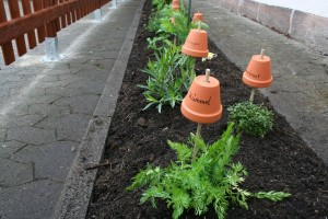 Unser neuer Kräutergarten